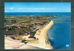 Cpsm Gf -   Ile D'oléron ,  Saint Denis Vu D'ensemble De La Plage Et Du Camping  LL15247 - Ile D'Oléron