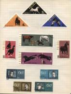 Polska -  12 Stamps - 12 Timbres - 12 Postzegels - Pologne