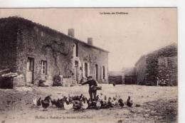 Moisdon-la-Rivière..animée..Mulliez..la Ferme Des Rinfilières..volailles..poules - Moisdon La Riviere