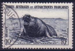 TAAF N° 6 Oblitéré - Faune - Tierras Australes Y Antárticas Francesas (TAAF)
