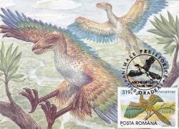 PREHISTORIQUES BIRDS,ARCHEOPTERYX,1994, CM MAXICARD,CARTES MAXIMUM VERY RARE ROMANIA. - Sellos