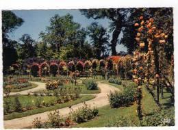 CPM 10*15/E1036/MARSEILLE PARC BORELY LA ROSERAIE - Parcs Et Jardins