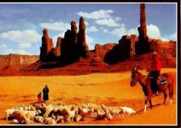 Divers         Navajo Indians Of Arizona, Utah And New Mexico    . - Etats-Unis
