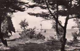 Ile De Ré Le Port De La Flotte - Ile De Ré