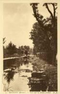 REVIGNY - Vue Sur Le Canal Oudot - Revigny Sur Ornain