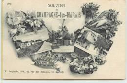 CHAMPAGNE LES MARAIS.  Souvenir, Carte Multivue. - Zonder Classificatie