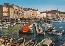 * * SAINT-TROPEZ * * Le Port  ( Carte Vierge ) - Saint-Tropez