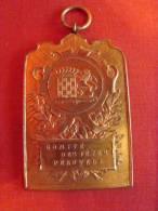 """Médaille En Bronze Doré """"comité Des Fêtes Peruwelz"""" époque Début 20éme - Firma's"""