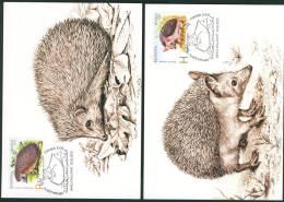 Belarus 2012 Hedgehogs Maxicards MNH - Belarus