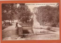 D45 - PUISEAUX - LA TOUR DE RELY (XVe SIECLE) ET L'ABREUVOIR  - état Voir Descriptif - Puiseaux