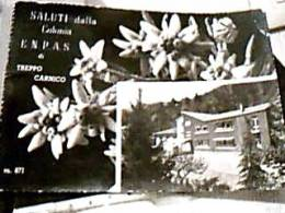 DALUTI DA  TREPPO CARNICO STELLE ALPINE E COLONIA ENPAS V1953   DX5157 - Udine