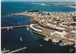 BRETAGNE - LE GUILVINEC - Le Port De Pêche - 1978 - Guilvinec