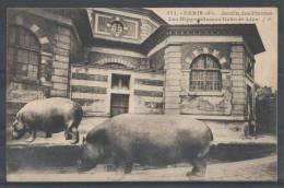 75 - PARIS 5 - Jardin Des Plantes - Les Hippopotames Kako Et Liza - 1927 - JH 371 - Arrondissement: 05