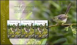 "ISRAEL - 2012 - ""Tel-Aviv 2013"" Multin´l Stamp Exh. - Birds Of Israel  - Graceful Prinia - Booklet Pane Of 3 Stamps -MNH - Songbirds & Tree Dwellers"