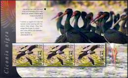 "ISRAEL - 2012 - ""Tel-Aviv 2013"" Multin´l Stamp Exh. - Birds Of Israel  - Black Stork - Booklet Pane Of 3 Stamps - MNH - Storks & Long-legged Wading Birds"