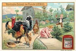 Chromo -ref 318- Liebig - Oiseaux - De Basse Cour -volailles- Coq -poules -dindon - - Liebig