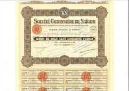 Société Cotonnière De Saigon Capital 12 Millions - Shareholdings