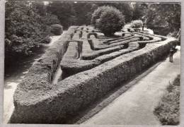 31491      Regno Unito,   Hampton  Court  Palace,  Middlesex,  The  Maze,  NV  (scritta) - Middlesex