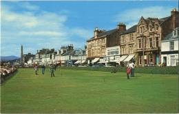 Helenburgh  :  UK  :  The Putting Green  (  GOLF )   Small Card  14 X 9 Cm - Golf