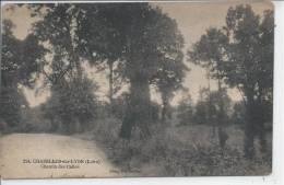 CHAZELLES SUR LYON - Chemin Des Calles - Ohne Zuordnung