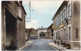 AMBONNAY (Marne) - Le Café ( Tube H Citroen ) - France