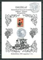 MAGYAR POSTA, 31/08/1999 Csizmazia Darab Jozsef - BALATONFÜRED (GA3065) - Vins & Alcools