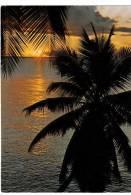 BR21002 Sunrise At Cape Tribulation North Cairns   2 Scans - Cairns