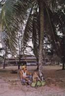 Cp , MALAYSIA , KOTA BARU , Resort Pantai Cinta Barahis' House , Monkey At Work Plucking Coconuts For Guests - Malaysia