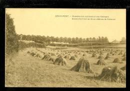 Quaremont - Kwaremont - Kluisberg - Kluisbergen - Mont De L´ Enclus  :   Beneden Het Oud Kasteel Van Calmont - Kluisbergen