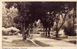 Penang Botanical Gardens - Maleisië