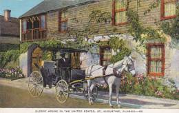 Florida St Augustine Oldest House In United States With Horse &a