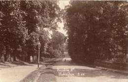 Reading Road, Wokingham.     RPPC.           (D720). - Inghilterra