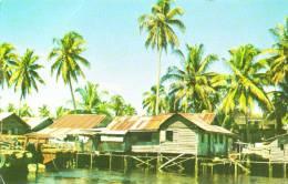 Kampong Scene Sarawar - Maleisië