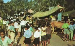 Bullock Carts - Maleisië