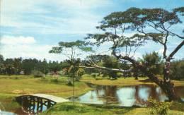 Taiping LAke Perak - Maleisië