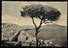 1954 NAPOLI PANORAMA FG V 2 SCAN - Napoli