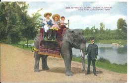 éléphant Et Enfants Indian - Elephants