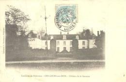 Environs De Pithiviers - CHILLEURS -aux-BOIS - Chateau De La Saussale , Voir Scan - Pithiviers