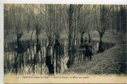 91 - DRAVEIL - Forêt De Sénart , La Mare Aux Saules - Draveil