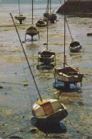 20772 Marée Basse, Voiliers Sur Béquilles à Binic . Belles éd De Bretagne 1254