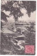 20775 Spettisbury (sic ) Spetisbury .  Bub By E S Hunt -tampon Postal Spettisbury - Angleterre