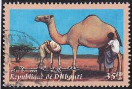 Timbre-poste Oblitéré - Animaux Domestiques Djiboutiens Dromadaire - N° 824 (Yvert) - N° 771 (Michel) - Djibouti 2000 - Gibuti (1977-...)