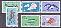 Bulgaria  1164-9  *  FAUNA  SEA LIFE - Bulgaria