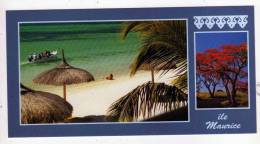 Carte Postale Et Enveloppe Décorée ILE MAURICE PLAGE MAURITIUS 1996  FORMAT 10,5 X 20 - Maurice