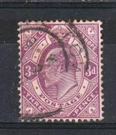 Capo Di Buona Speranza   -   1903/04.  Edoardo VII   3 Pence  Lilla - South Africa (...-1961)