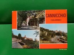 CANNICCHIO Salerno Bar La Pergola 1977 - Salerno
