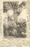Peruwelz-Bon-Secours(Belgio)-Le Gros Chene-1901 - Perwez