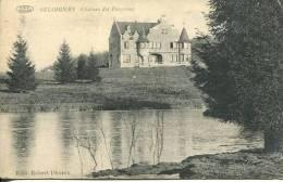 N°23968 -cpa Seloignes -château Des Bergeries- - Other