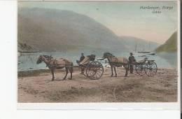 HARDANGER, NORGE ODDA - Norvège