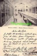 CPA MAISON DE MELLE  MUSEE D'HISTOIRE NATURELLE - Melle